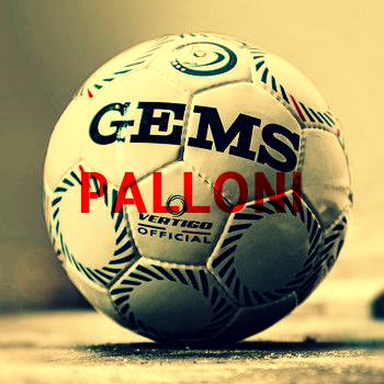 https://www.calcioa5shop.com/6-palloni